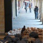 Sous les arcades de la Place Ducale